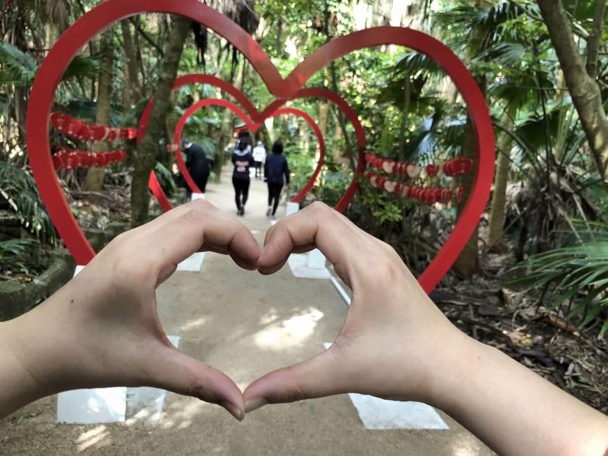 青島神社とCanCamのコラボイベント