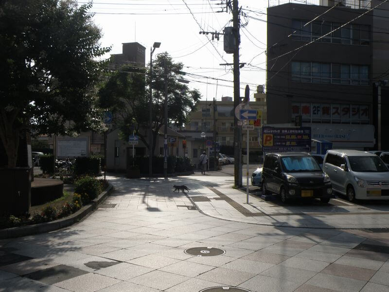 上野町通りの駐車場