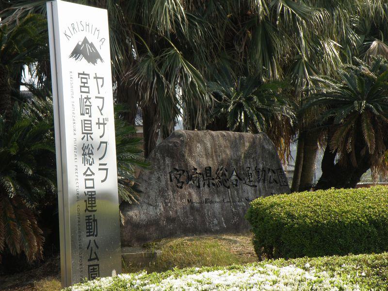 KIRISHIMAヤマザクラ宮崎県総合運動公園