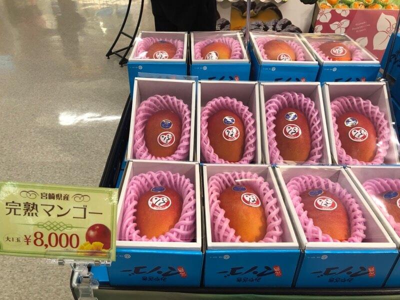 宮崎県産完熟マンゴー