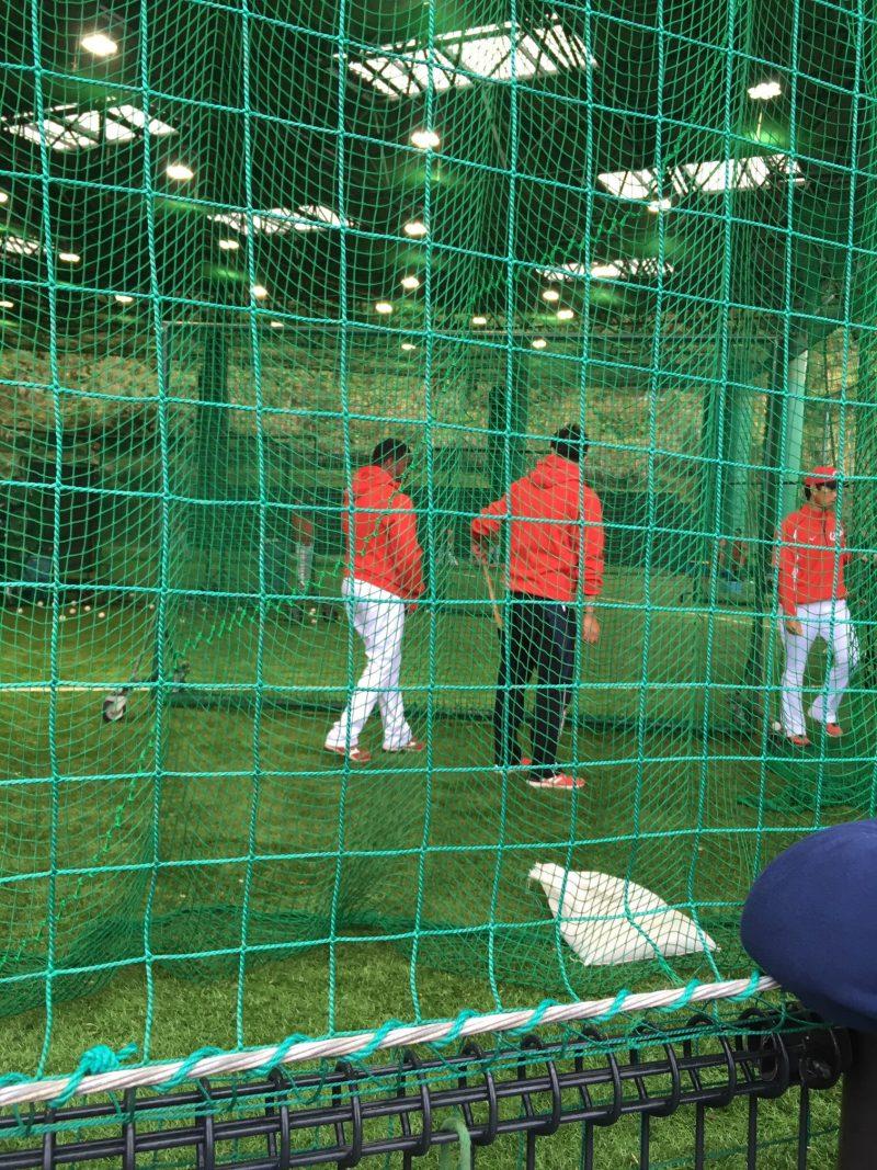 天福球場の室内練習場で投球練習