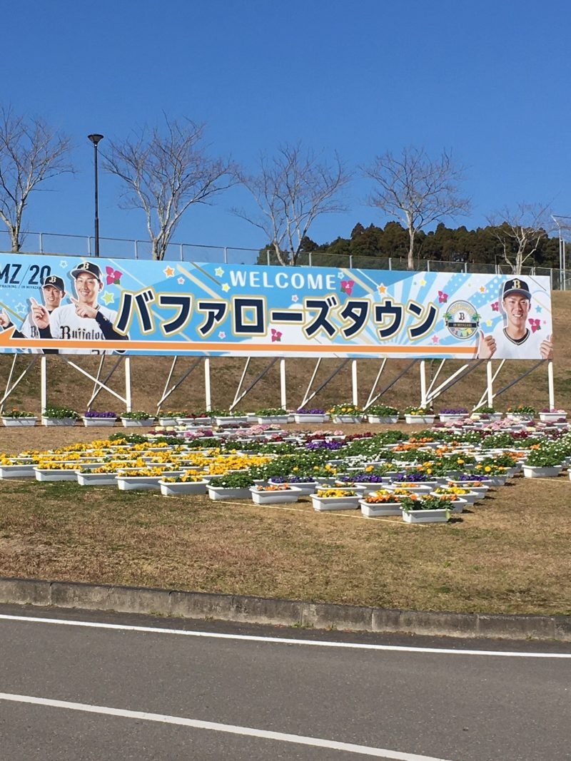 オリックスバファローズ宮崎春季キャンプ2020