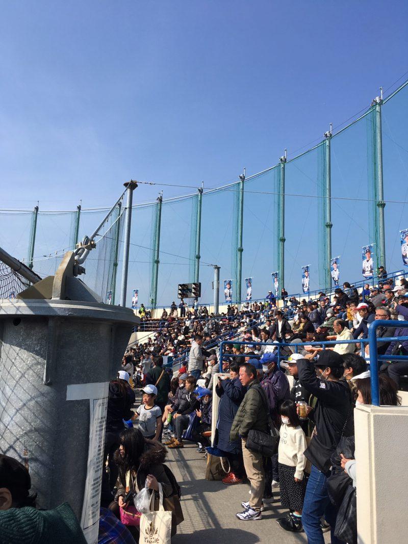 埼玉西武ライオンズ春季キャンプ 南郷スタジアムの雰囲気