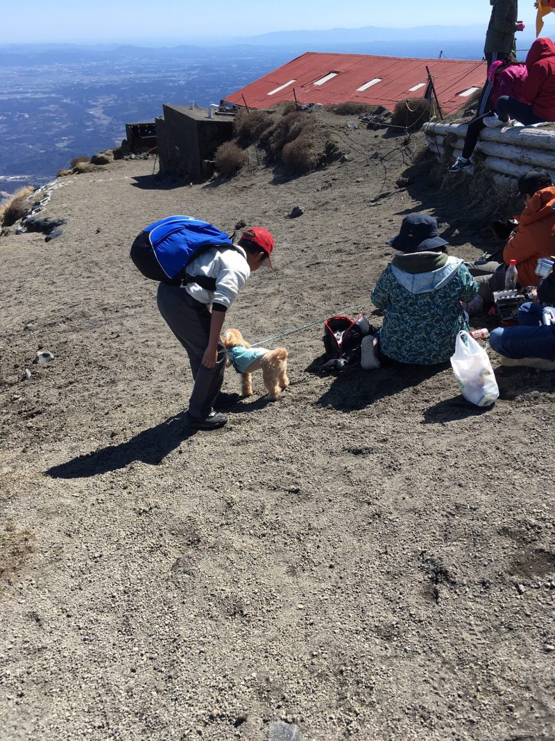 高千穂峰山頂 犬